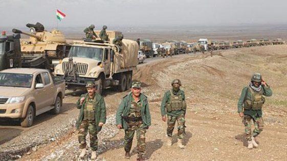 کردهای عراق