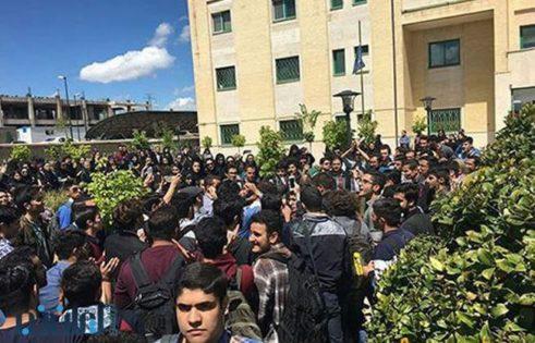 دانشگاه پردیس