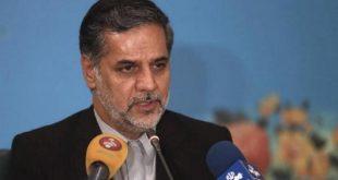 حسین نقوی حسینی، سخنگوی کمیسیون امنیت ملی و سیاست خارجی مجلس