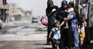 """محله """"الجدیده"""" موصل"""