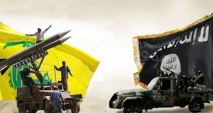 داعش ،حزبالله