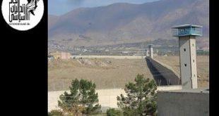بتون ریزی باغچه کوچک زندانیان سیاسی در هواخوری بند ۴ سالن ۱۰ زندان گوهردشت