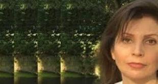 حقوق بشر و اکو سیستم را با ملایان ملوث نکنید : نکیسا بامداد